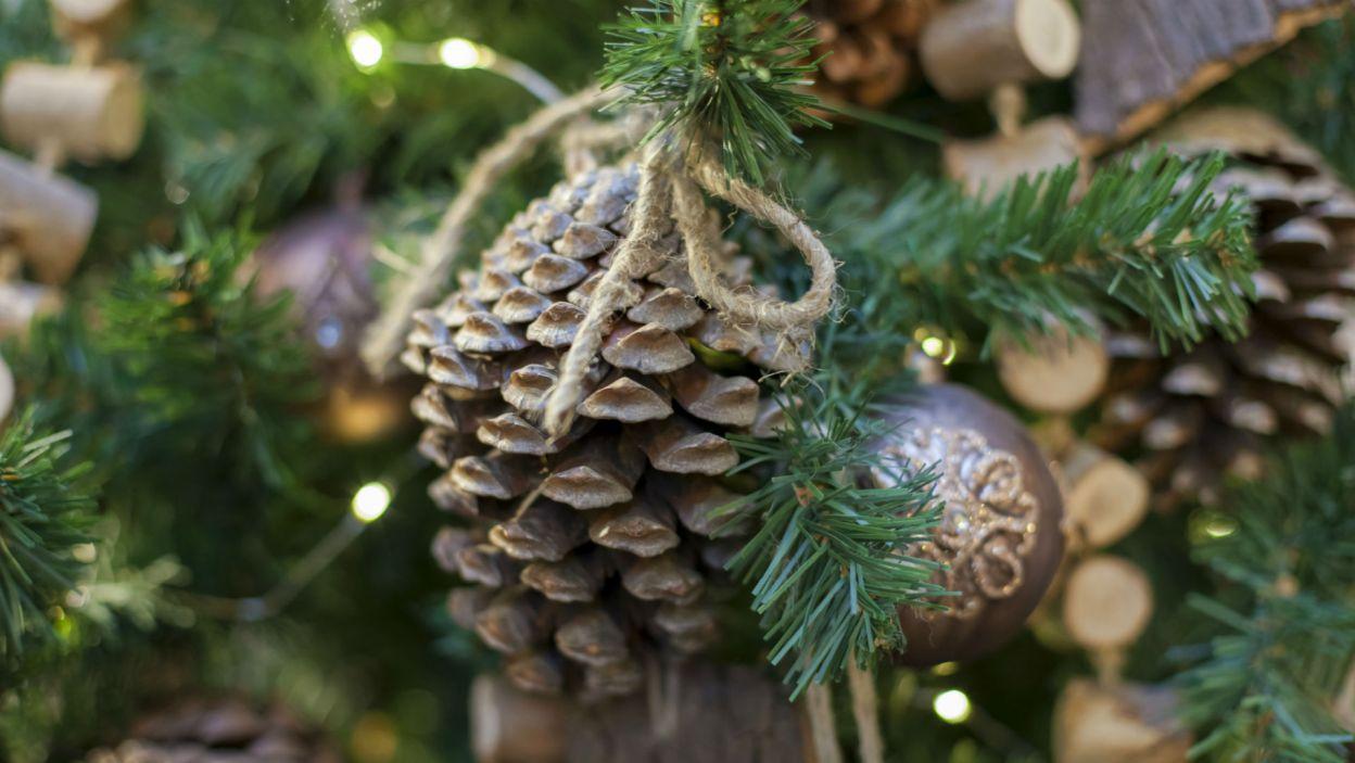 Niektórzy stawiają na świąteczną florę... (Fot. Shutterstock)