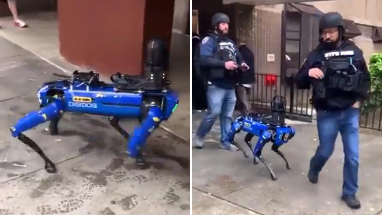 NYPD ma od niedawna na swym wyposażeniu psa-robota Digidoga (fot. Twitter/THEE DON)