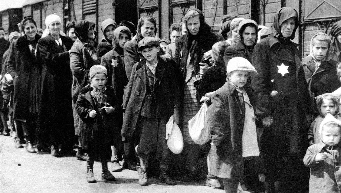 – Antysemityzm w Niemczech ma różne formy – mówi historyk fot. Galerie Bilderwelt/Getty Images0