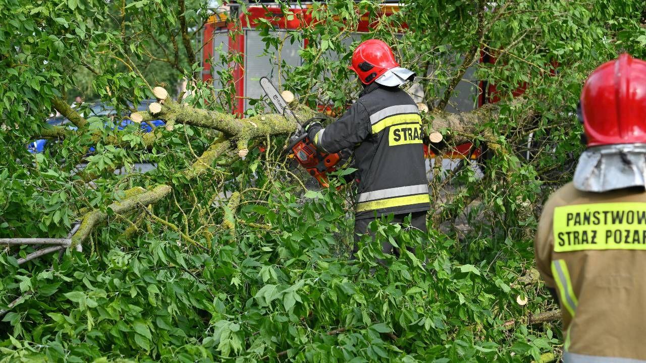 Główne działania strażaków polegały na udrażnianiu szlaków komunikacyjnych z wiatrołomów (fot. PAP/Marcin Bielecki)