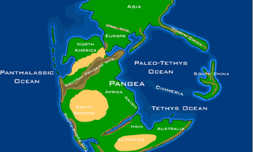 Pangea (gr. Wszechziemia) – superkontynent istniejący między 300 a 180 mln lat temu. Uformował się w karbonie, na skutek zamknięcia się paleozoicznego oceanu Reik oraz kolizji kontynentów Laurosji i Gondwany. Towarzyszyło temu intensywne wypiętrzanie się gór. Grafika: geografia superkontynentu Pangei w triasie. Fot. Wikimedia Commons/Dropzink – praca własna (na http://www.scotese.com/newpage8.htm i dodana do strony nt. dinozaurów http://www.synthlog.com/dinosauriax/triasico.htm), CC BY-SA 2.5