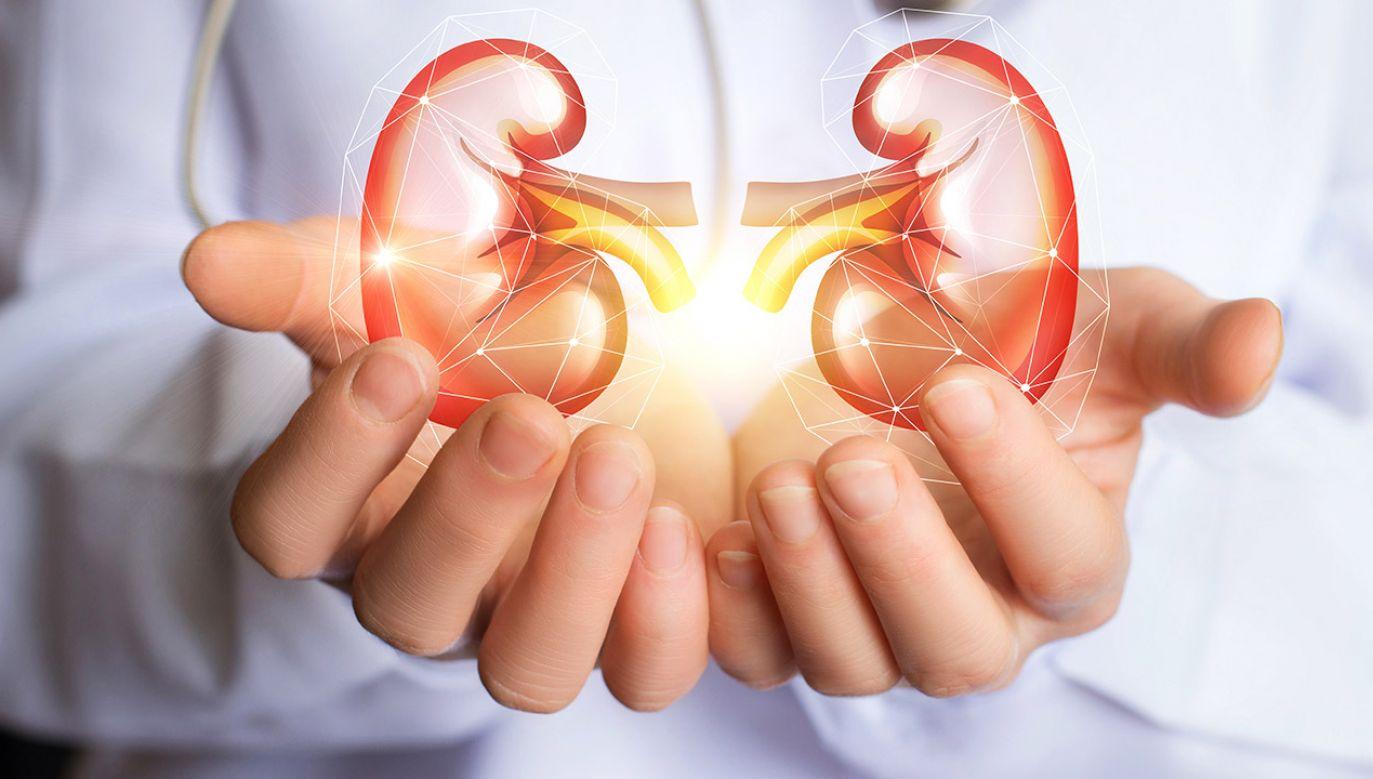 Implant nie sprowokował reakcji układu odpornościowego (fot. Shutterstock/Natali_ Mis)
