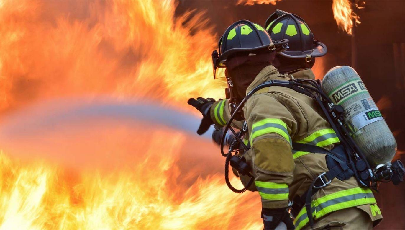 Strażacy nie zdołali uratować domu (fot. Pexels)