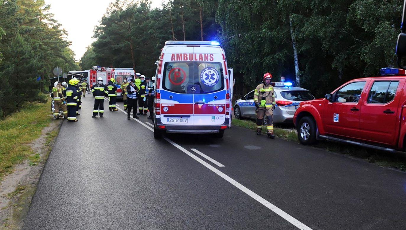 Policjanci ustalili, że autobus nagle jechał z drogi i uderzył w drzewo (fot. PAP/Marcin Bielecki)