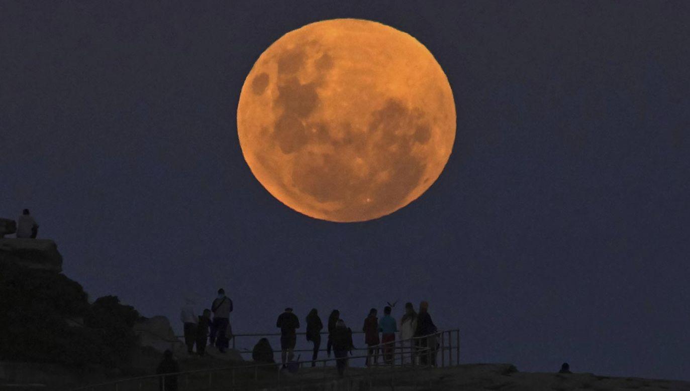 Krwawy Księżyc (fot. PAP/Steven Saphore / Anadolu Agency/ABACAPRESS.COM)