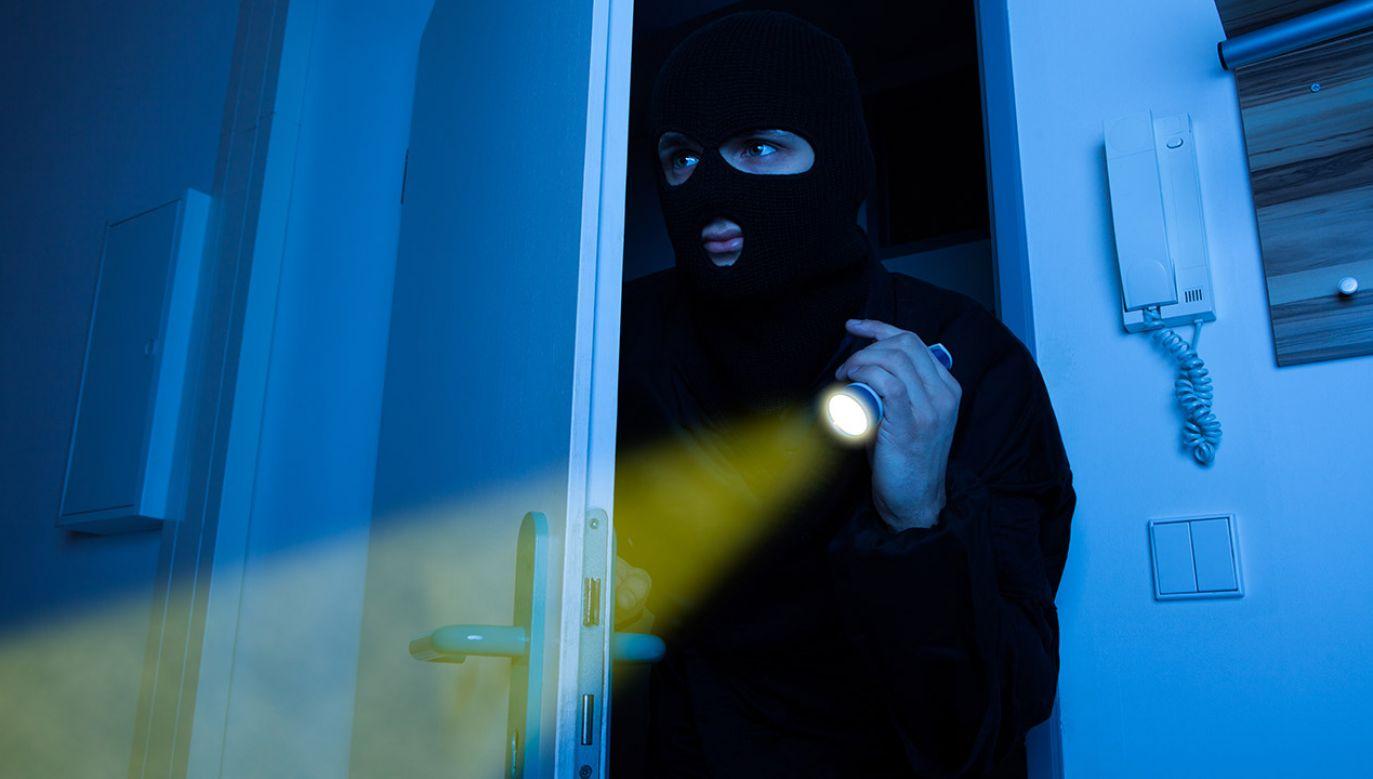 38-latek będzie odpowiadał nie tylko za kradzież (fot. Shutterstock/Andrey_Popov)