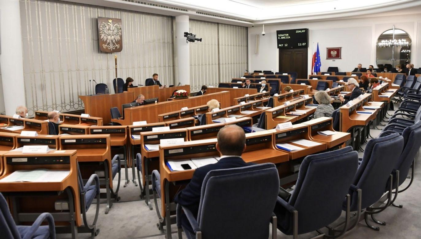 PSL oczekuje od koalicjantów w Senacie poparcia dla poprawek do ustawy o ochronie zwierząt (fot. PAP/Piotr Nowak)