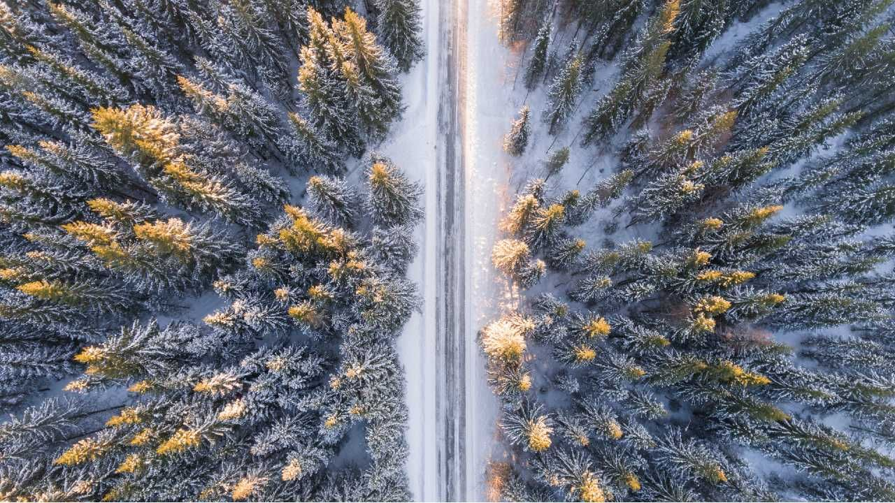 Zima powoli odpuszcza (fot. Pexels)