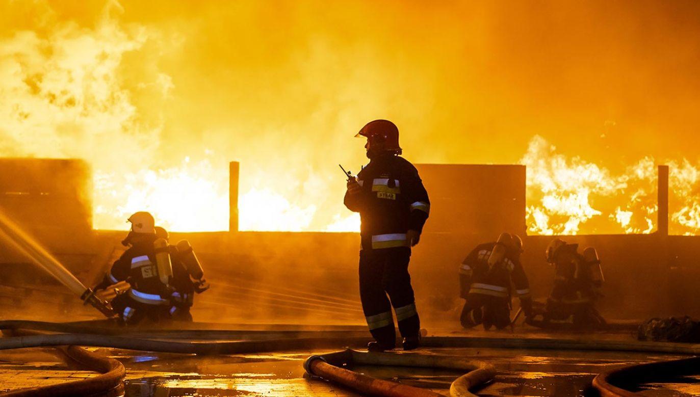 Wedługnieoficjalnych informacji w domu miało dojść wcześniej do awantury (fot. PAP/Tytus Żmijewski, zdjęcie ilustracyjne)