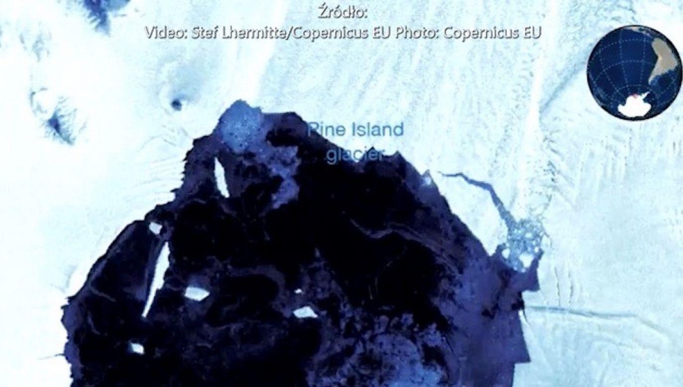 W wyniku odłamywania się fragmentów lodowca powstały góry lodowe (fot. Stef Lhermitte/Copernicus EU)