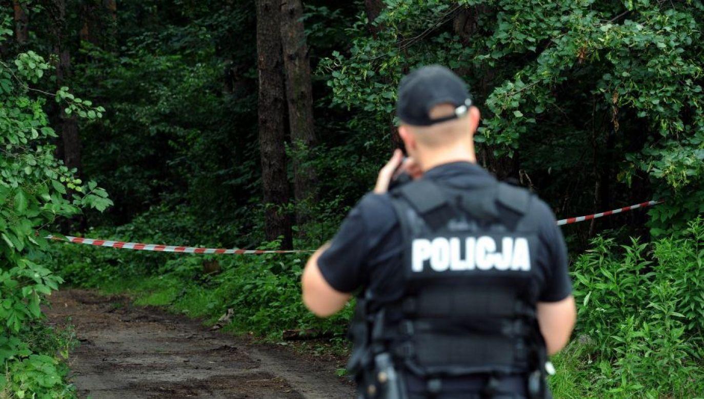 Ciało odnaleziono w lesie w miejscowości Bierzwnik  (fot. arch. PAP/Grzegorz Jakubowski)