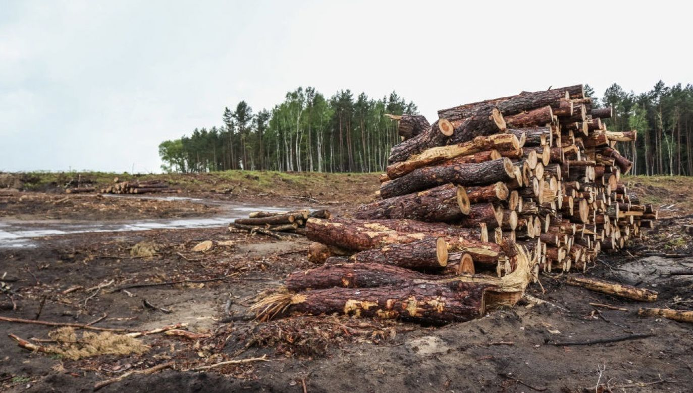 Rafał Trzaskowski chce odłożenia budowy CPK i przekopu Mierzei Wiślanej (fot. Michal Fludra/NurPhoto via Getty Images)