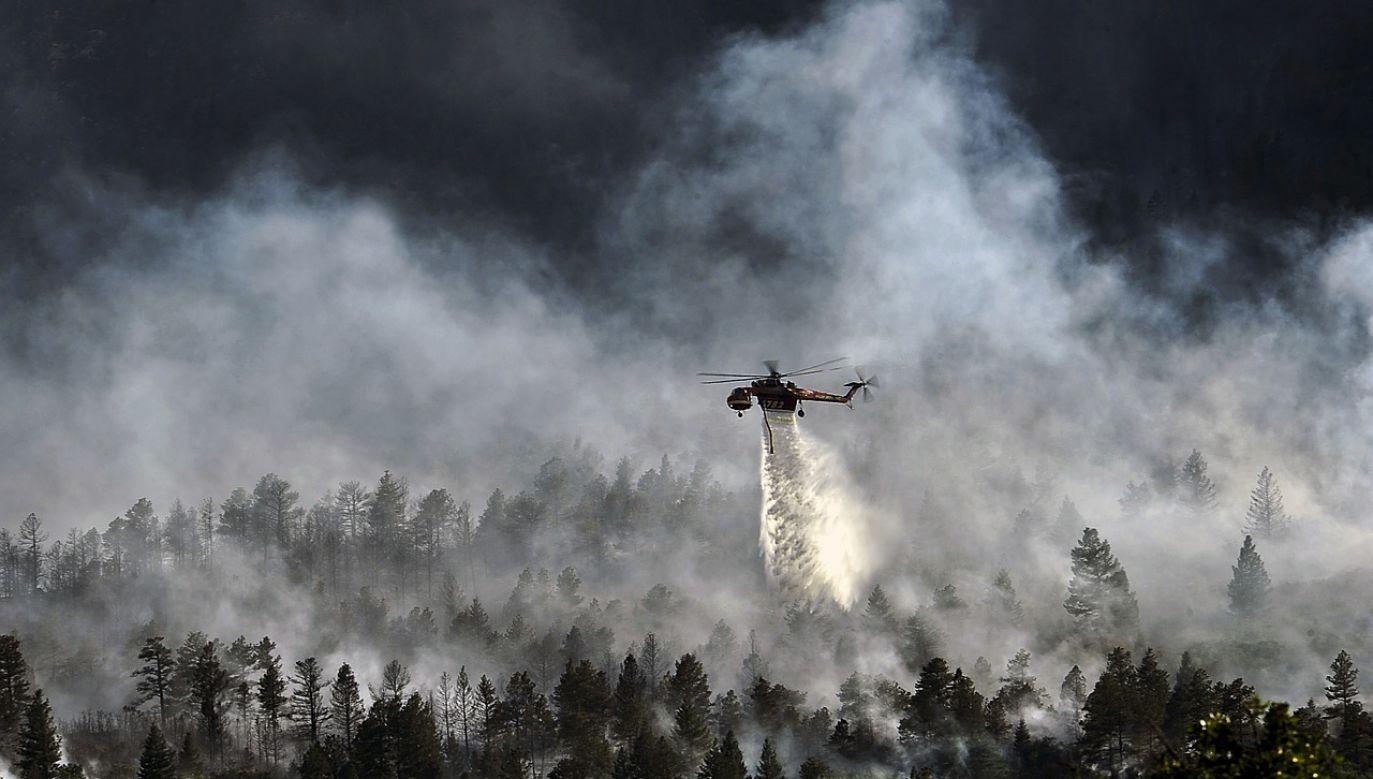 Ponad stu strażaków zmaga się z ogniem na greckiej wyspie Zakintos (fot. Obraz skeeze z Pixabay)