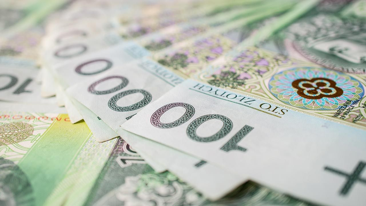 W ubiegłym roku wpłata z zysku NBP do budżetu państwa stanowiło 95 proc. wypracowanego przez bank zysku  (fot. Shutterstock/kolbet)