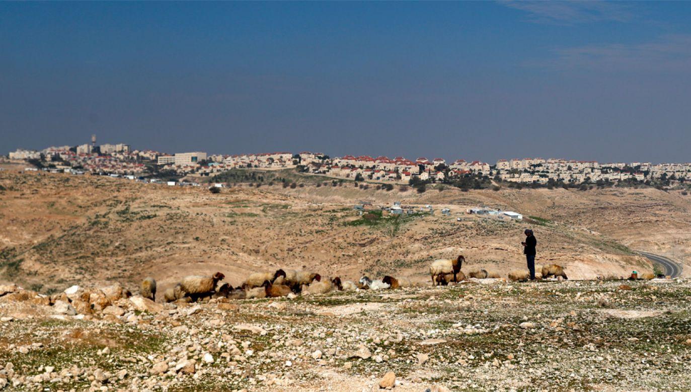 Izrael buduje nielegalne osiedla na Zachodnim Brzegu (fot. PAP/EPA/ATEF SAFADI)