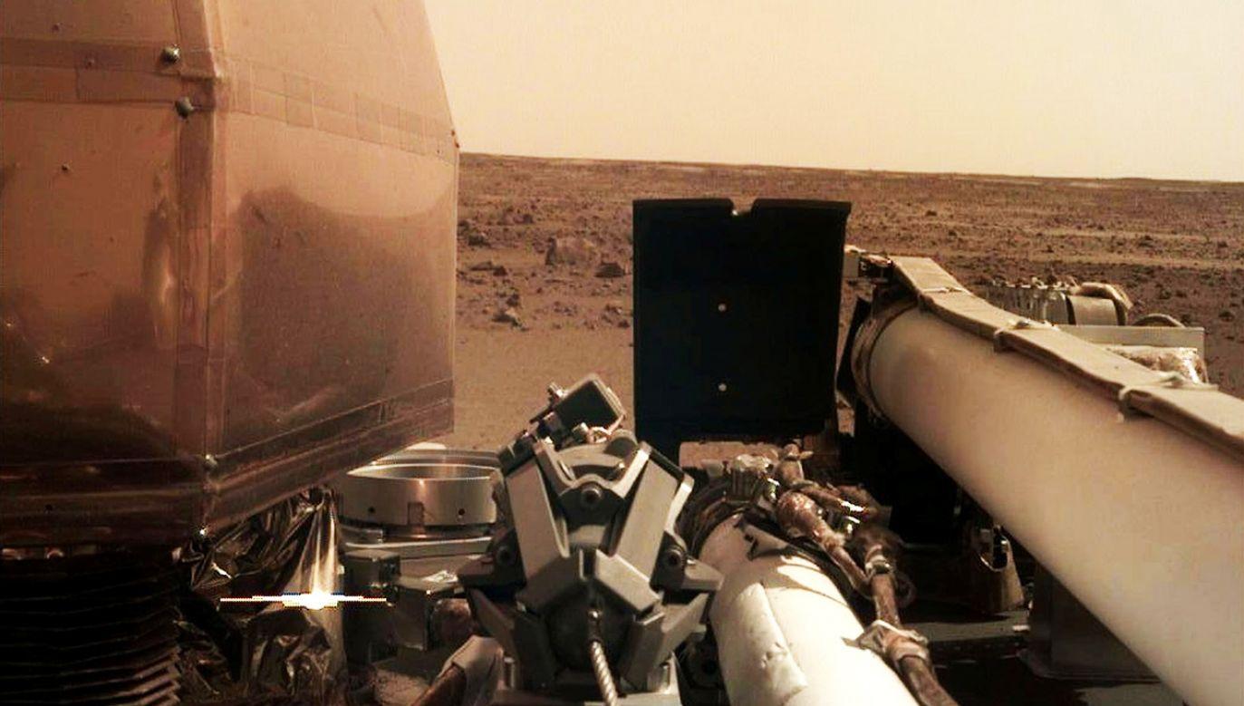 Lądownik InSight bada powierzchnię Marsa od ponad roku (fot. REUTERS/NASA/JPL-Caltech/Handout)