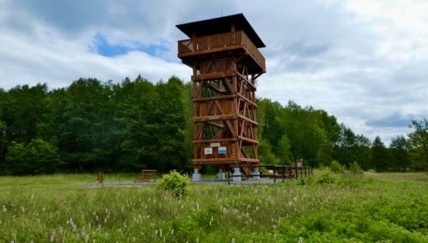 Wieża widokowa ma prawie 14-metrów, jest zlokalizowana w rejonie Łęska (fot. M.Jaguś/Nadleśnictwo Kliniska)
