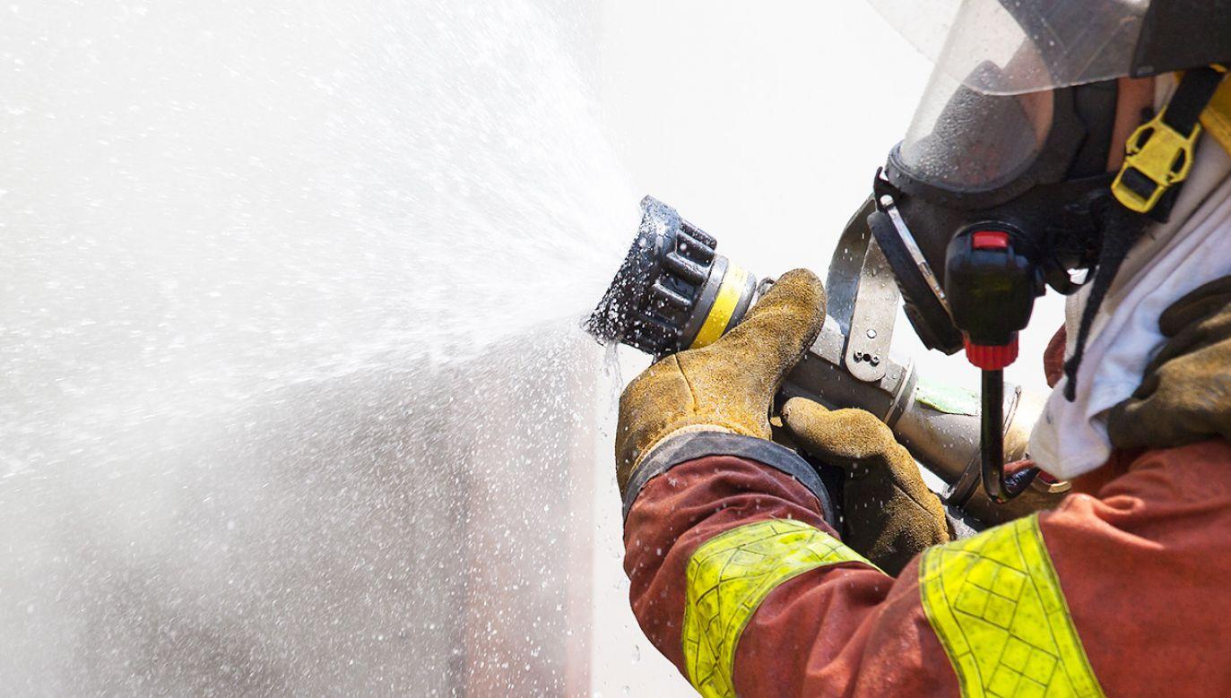 Właściciel lokalu oszacował szkody spowodowane przez podpalaczy na 2 tys. złotych (fot. Shutterstock/Prath)
