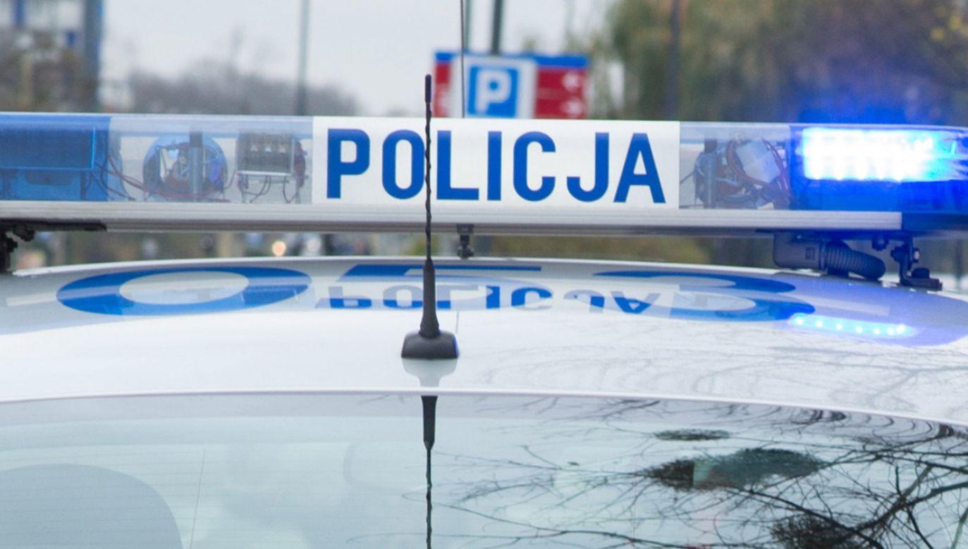 W wypadku nikt nie został ranny (fot. Policja)