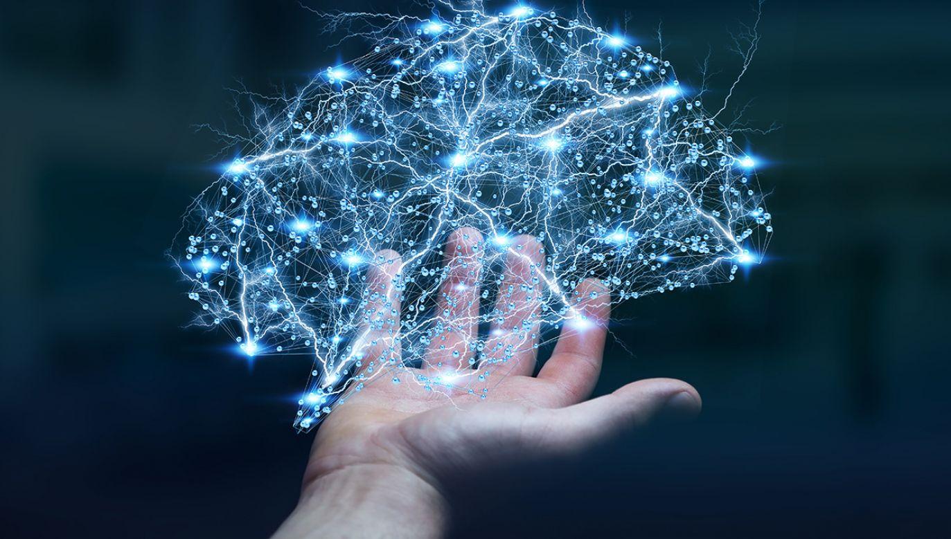 """W Waszyngtonie właśnie dobiegła końca konferencja Amerykańskiego Towarzystwa Psychologicznego pod tytułem: """"Technologia, Umysł i Społeczeństwo"""" (fot. Shutterstock/sdecoret)"""