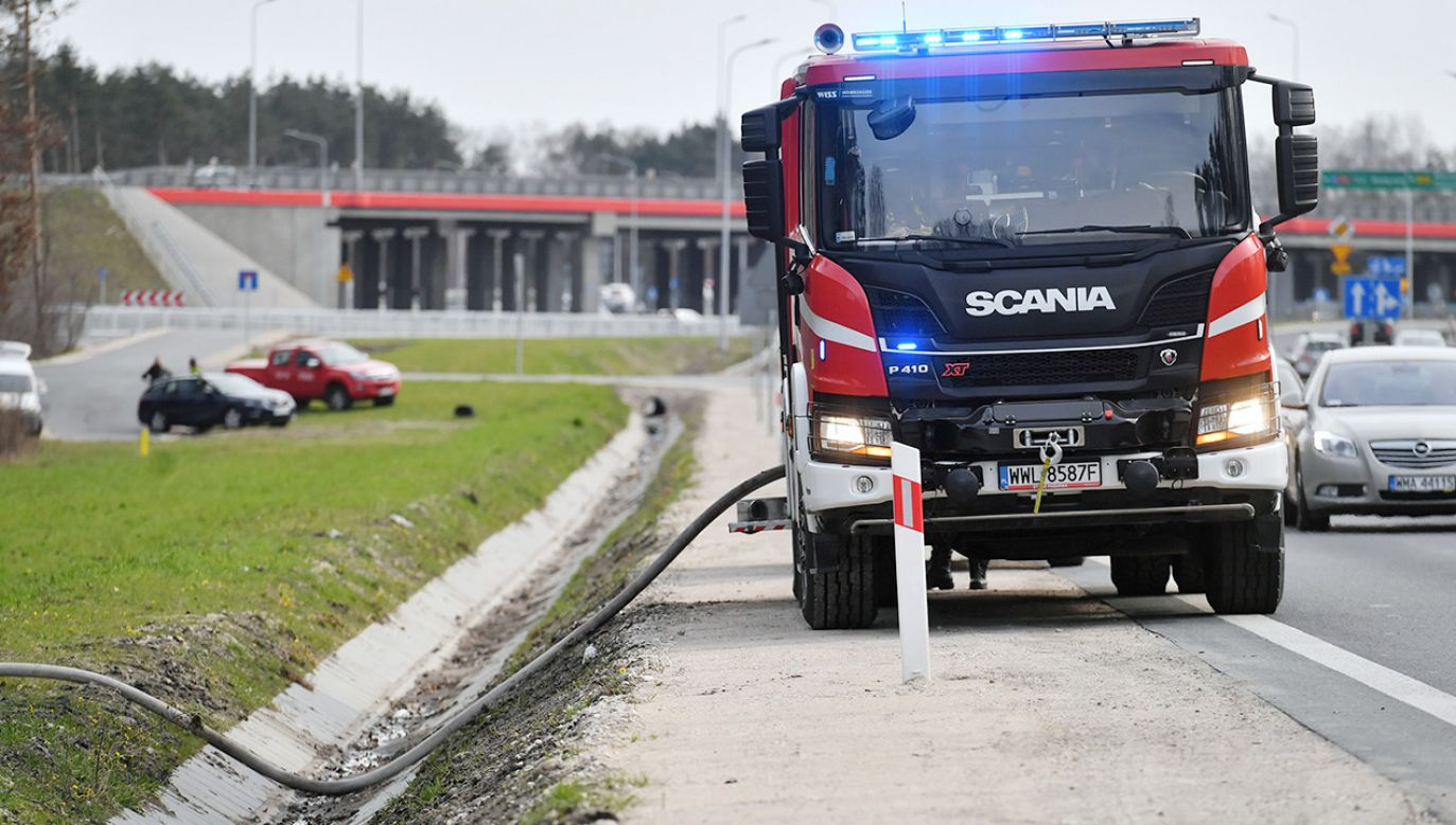 Ogień objął około pięciu hektarów powierzchni (fot. PAP/Piotr Nowak)