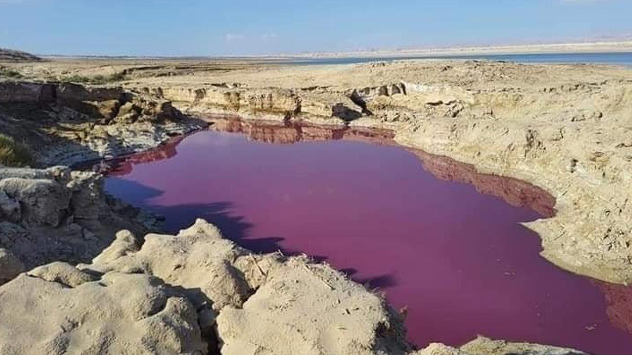 Morze Martwe. Zdjęcia niecodziennego zjawiska trafiły do sieci (fot. Facebook)
