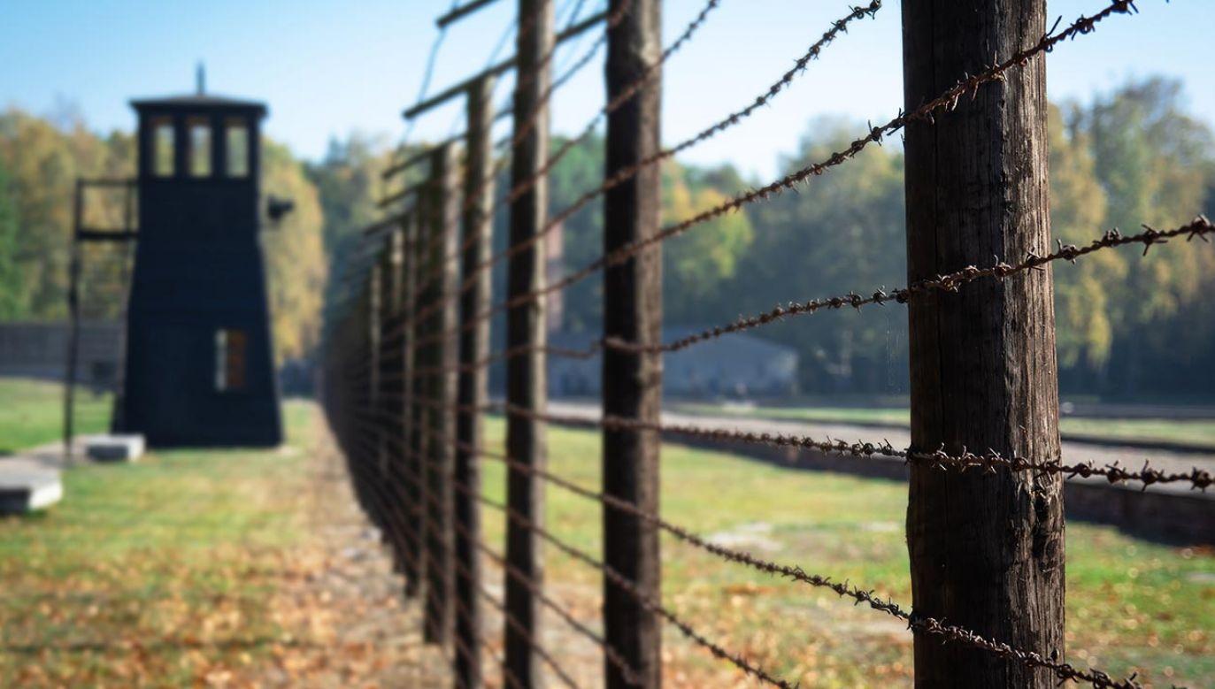 Według szacunków historyków w niemieckim obozie Stutthof zginęło ponad 65 tysięcy osób (fot. Shutterstock/kaate)