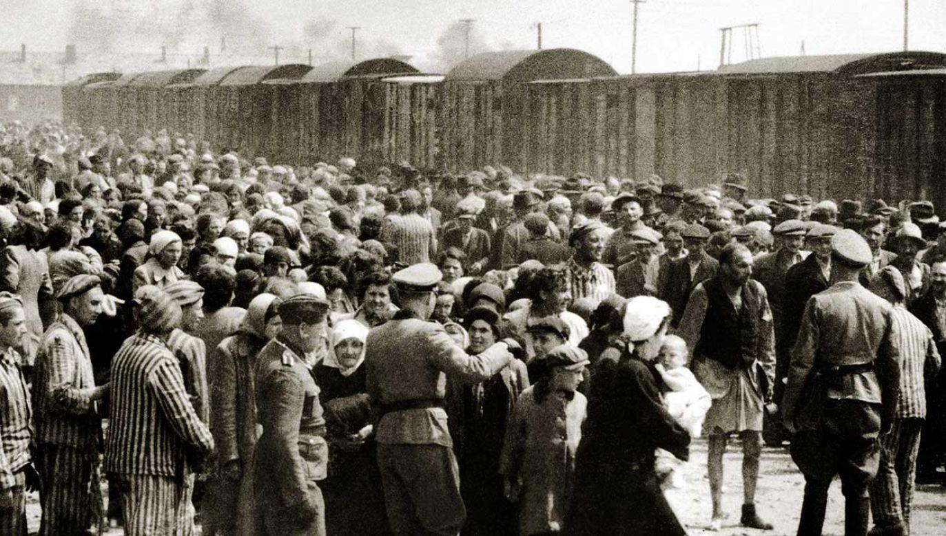 """Transporty ofiar Holokaustu na zlecenie nazistowskich Niemiec to """"czarna karta w historii przedsiębiorstwa"""" – przyznano w oświadczeniu holenderskich kolei (fot. Galerie Bilderwelt/Getty Images)"""