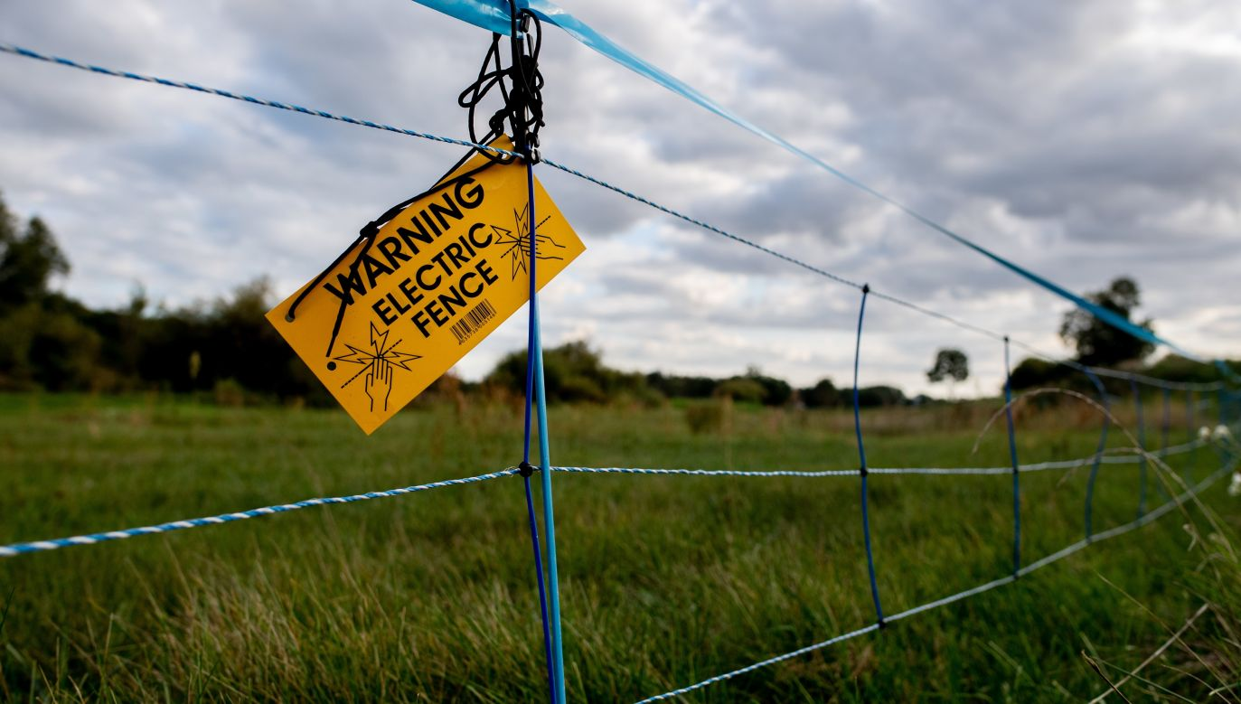 An electric wildlife fence with a note reading 'Warning electric fence' on the border between eastern Germany and western Poland. Photo: PAP/EPA/Filip Springer