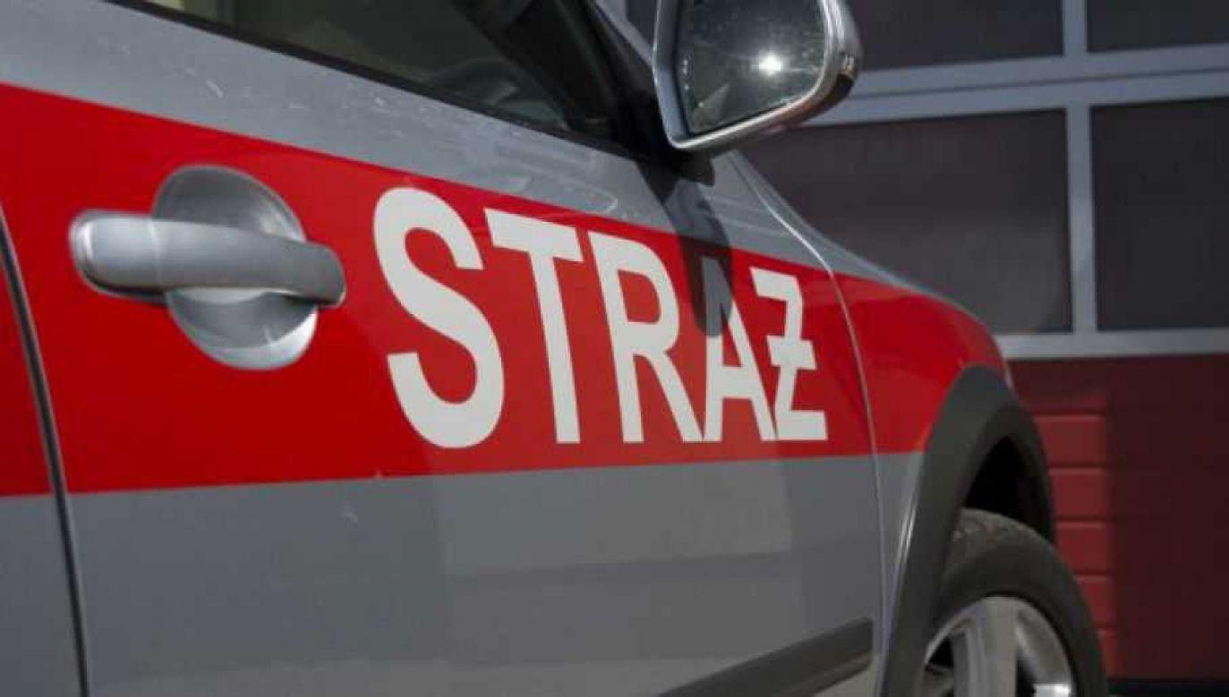 Strażacy ugasili pożar (fot. tvp.info/Paweł Chrabąszcz)