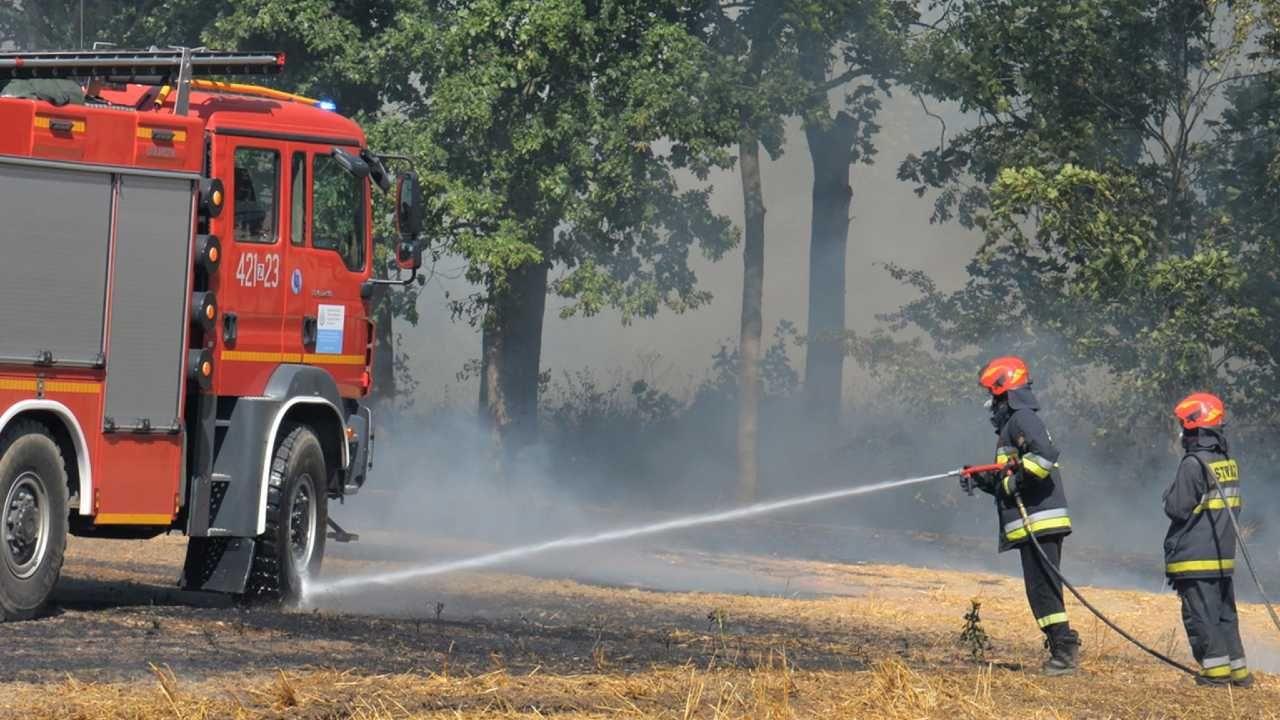 Strażacy przeprowadzą eksperyment (fot. PAP/Marcin Bielecki)