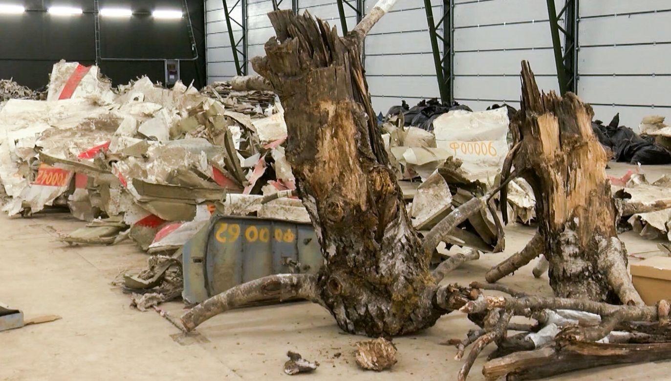 Do katastrofy samolotu doszło w Smoleńsku 10 kwietnia 2010 r. o godz. 8:41 (fot. Russian Investigative Committee\TASS via Getty Images)