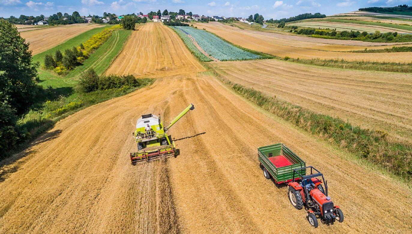 W przedstawionym w sobotę programie znalazło się wiele rozwiązań dla rolników (fot. Shutterstock/Mad Pixel)