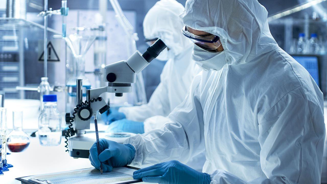 Źródłem pierwszego zakażenia koronawirusem – niezależnie od lokalizacji infekcji – był najprawdopodobniej nietoperz (fot. Shutterstock/Gorodenkoff)
