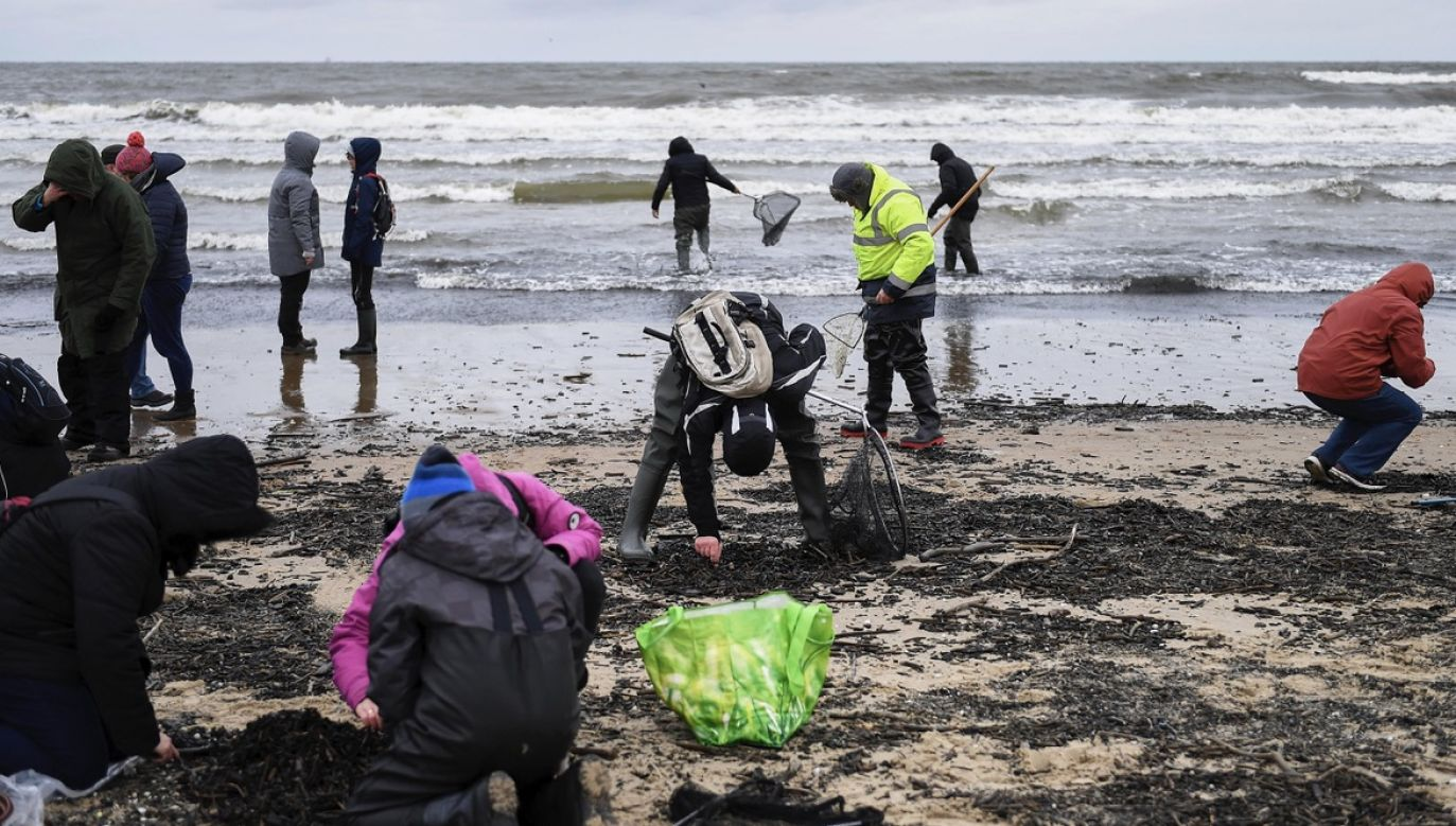 Ludzi na plażach jest coraz więcej (fot. arch.PAP/Adam Warżawa)