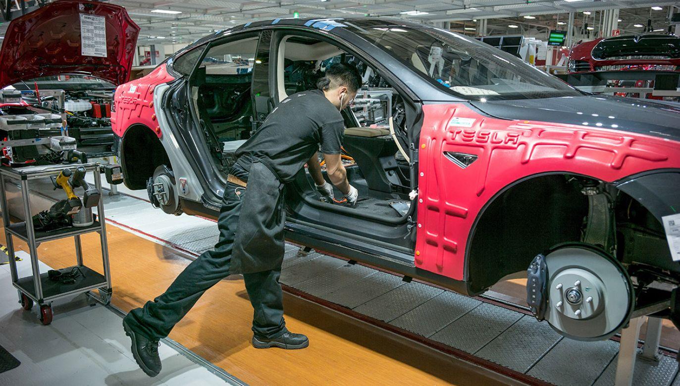 Niemcom nie podoba się, że Tesla szuka pracowników w Polsce (fot. David Butow/Corbis via Getty Images)