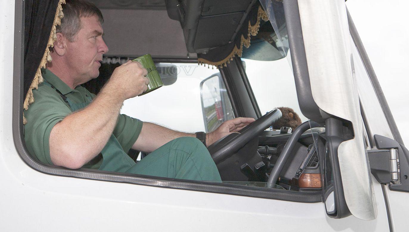 Z badań wykluczono kierowców pijących 2-4 kawy dziennie oraz tych, którzy nie spożywali kofeiny (fot. Sam Mellish / In Pictures via Getty Images Images)